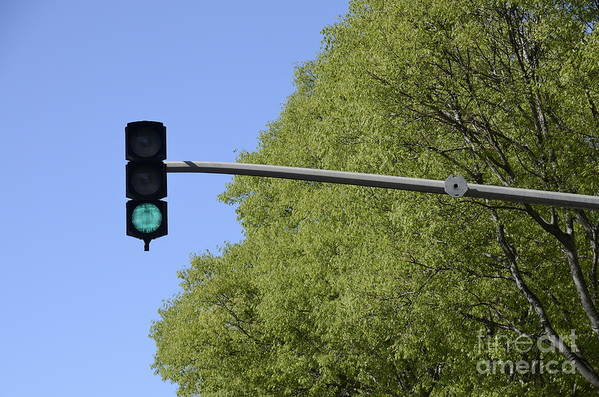Authority Print featuring the photograph Green Traffic Light By Trees by Sami Sarkis
