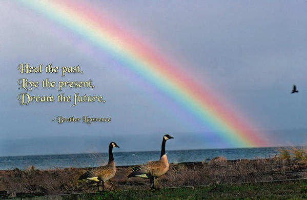 Quotation Art Print featuring the photograph Heal The Past by Mike Flynn