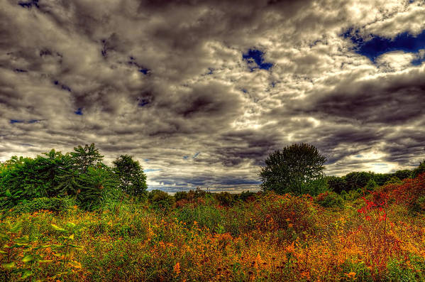 Nature Landscape Dark Moody Heaven Grassland Wild Flower Red Blue Green Gray Clouds Sky Art Print featuring the photograph Heaven And Earth by Karl Barth