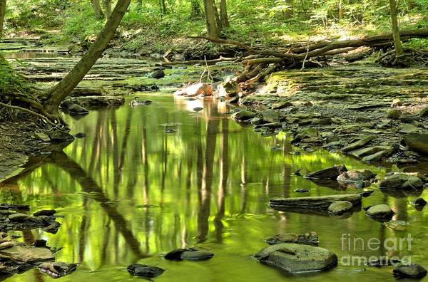 Hells Hollow Print featuring the photograph Hells Run Reflections by Adam Jewell