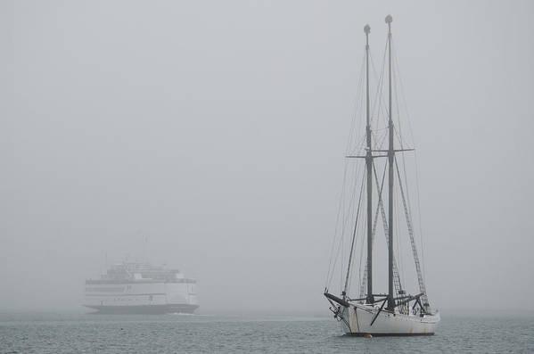 Fog Art Print featuring the photograph Into The Fog by Steve Myrick