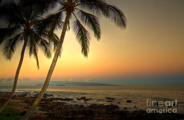 Kihei Art Print featuring the photograph Kihei Palm Sunrise by Kelly Wade