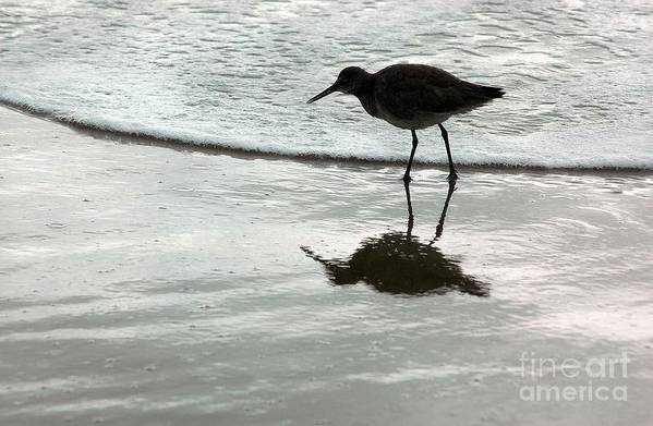 Beach Art Print featuring the photograph Little Footsteps by Dan Holm