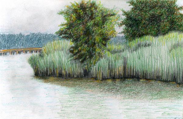 Mariner Point Park Art Print featuring the drawing Mariner Point Park by Ceilon Aspensen
