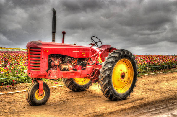 1950 Art Print featuring the photograph Massey by Heidi Smith