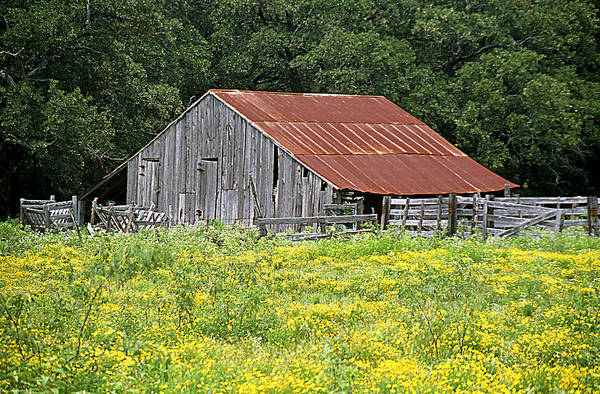 Structures Art Print featuring the photograph Old Barn by Jim Smith