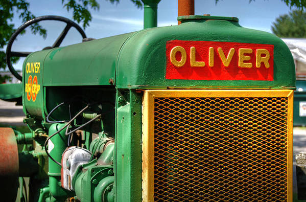 Oliver Art Print featuring the photograph Oliver by Guy Harnett