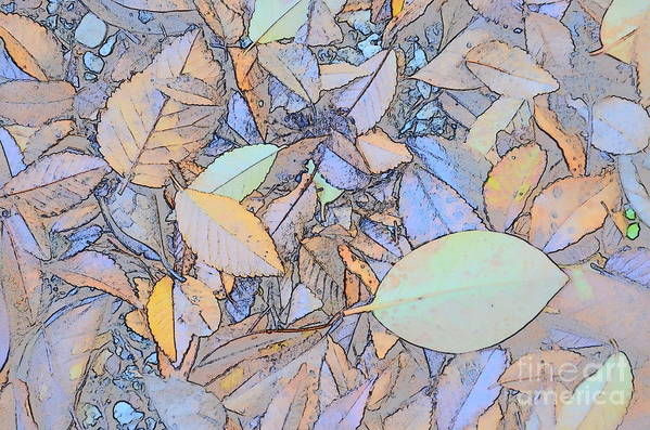 Leaves Art Print featuring the photograph Pastel Leaves by Charles Majewski
