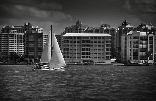 B&w Art Print featuring the photograph Sailing Away by Mario Celzner