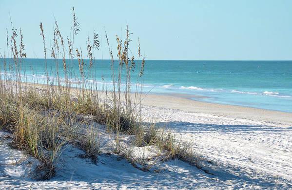 1f3d240906f Sea Oats Art Print featuring the photograph Serene Florida Beach Scene by Rebecca  Brittain