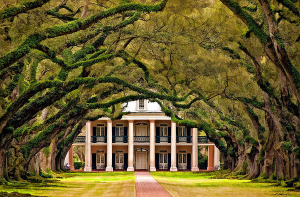 Oak Alley Plantation Art Print featuring the photograph Southern Class Painted by Steve Harrington