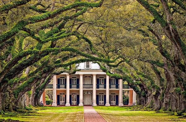 Oak Alley Plantation Art Print featuring the photograph Southern Class by Steve Harrington