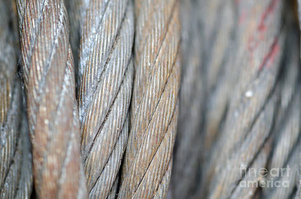 Steel Wire Art Print featuring the photograph Steel Wire by Mats Silvan