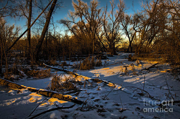 Winter Print featuring the photograph Sunset Snow by Baywest Imaging