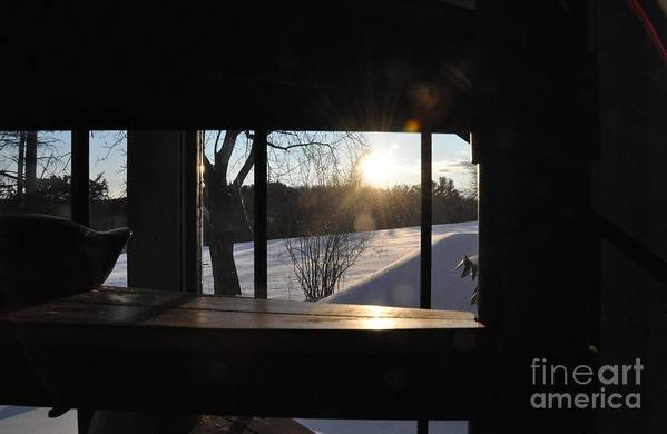 Winter Art Print featuring the photograph The Basement Window by John Black
