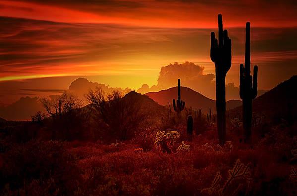 Desert Southwest Art Print featuring the photograph The Essence Of The Southwest by Saija Lehtonen
