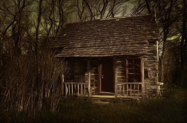Hermits Art Print featuring the photograph The Hermit's Cabin by Julie Dant