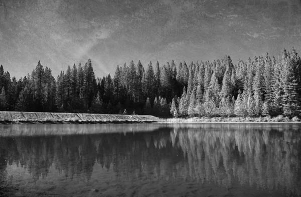 White Pines Lake Community Park Art Print featuring the photograph Those Days Are Gone by Laurie Search