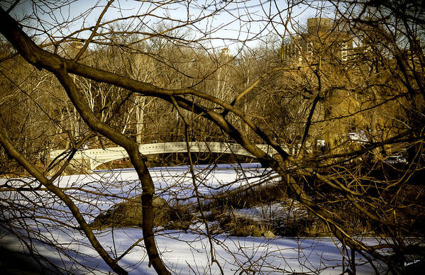 Bridge Art Print featuring the photograph Through The Branches 2 - Central Park - Nyc by Madeline Ellis
