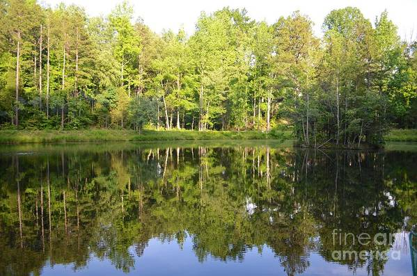 Reflection Art Print featuring the photograph True Reflection by Kerri Lane