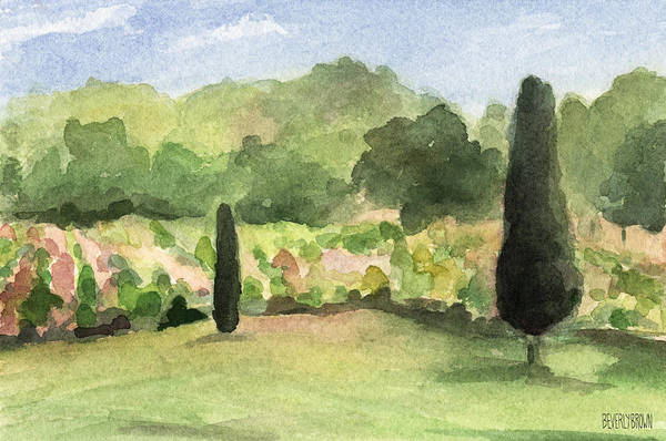 Vineyard Art Print featuring the painting Vineyard In Provence Watercolor Paintings Of France by Beverly Brown Prints