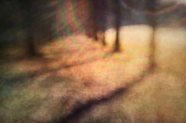 Blur Art Print featuring the photograph Warner Park Sunrise by David Morel