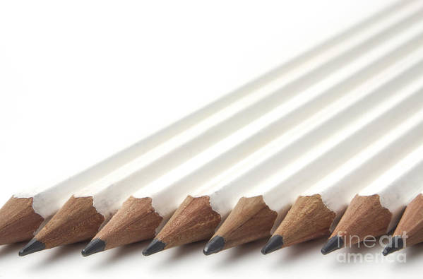 Pencil Art Print featuring the photograph Row Of White Pencils by Blink Images