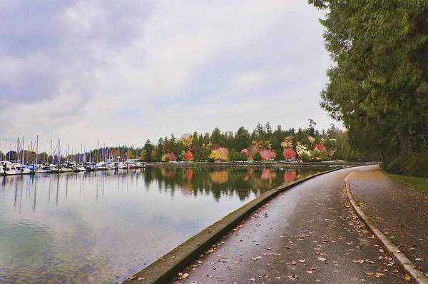 Mood Art Print featuring the photograph In Urban Stanley Park The Promenade by Douglas Orton