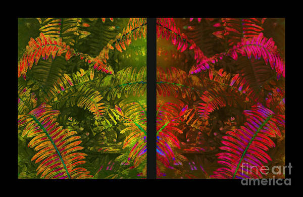 Christmas Print featuring the photograph Christmas Fern Diptych by Judi Bagwell