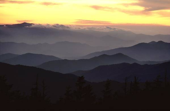Twilight Art Print featuring the photograph Clingmans Dome Is The Highest Point by James P. Blair