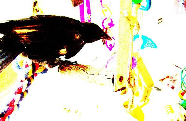 Crow Art Print featuring the mixed media Curious Crow by YoMamaBird Rhonda