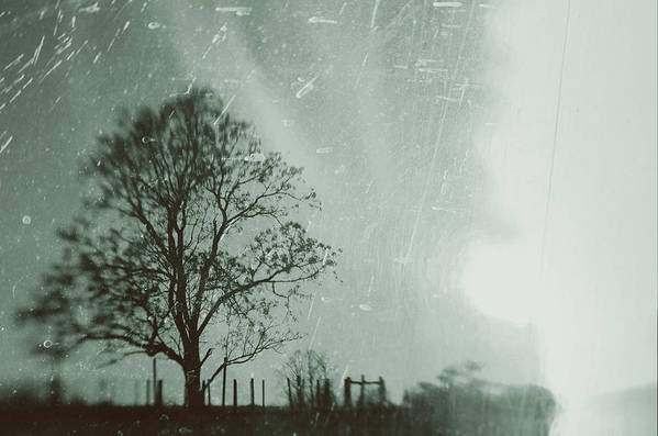 Landscape Art Print featuring the photograph February by Jason Harris