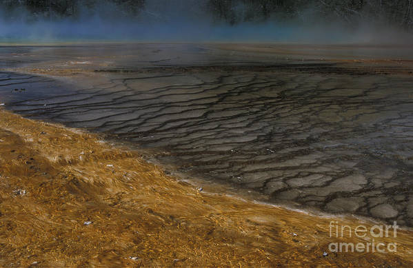 Yellowstone Art Print featuring the photograph Grand Prismatic Spring Runoff by Sandra Bronstein