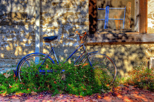 Old Bikes Art Print featuring the photograph Junked by Eyal Nahmias