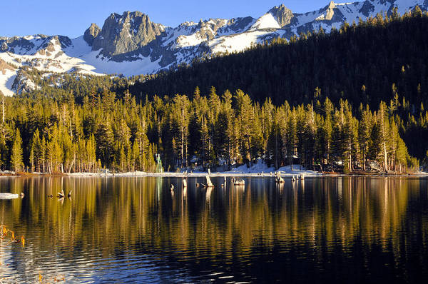 Lake Mary Art Print featuring the photograph Lake Mary Golden Hour by Lynn Bauer