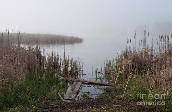 Marsh Art Print featuring the photograph Mclaughlin Bay In The Fog At The Shore by Gary Chapple