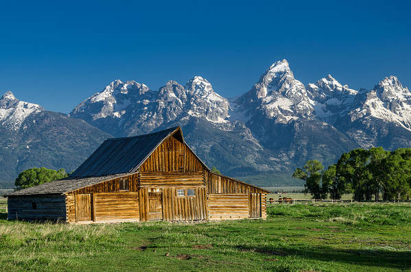 Mormon Row Art Print featuring the photograph Molton Barn And Grand Tetons by Greg Nyquist