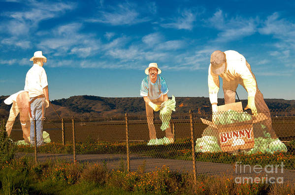 Monterey Art Print featuring the photograph Monterey Farmers by Sherry Davis