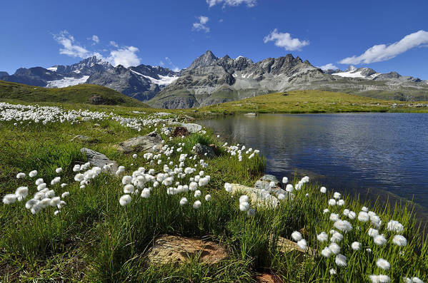 Horizontal Art Print featuring the photograph Mountain Lake, Near Schwarzee, Zermatt by Pierre Hanquin Photographie