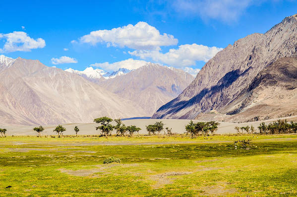 Horizontal Art Print featuring the photograph Nubra Valley Ladakh by Puneet Vikram Singh, Nature and Concept photographer,