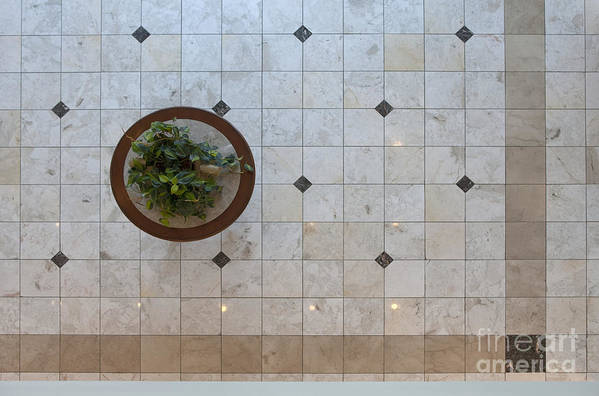 Architecture Print featuring the photograph Potted Plant In Foyer Floor From Above by Will & Deni McIntyre