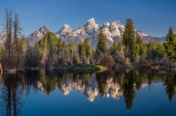 Schwabacher Landing Art Print featuring the photograph Reflections On Schwabacher Landing by Greg Nyquist