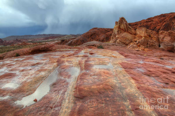 Sandstone Art Print featuring the photograph Slickrock by Bob Christopher