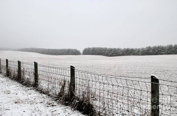 Art Print featuring the photograph Snowyfence by TSC Photography Timothy Cuffe Jr