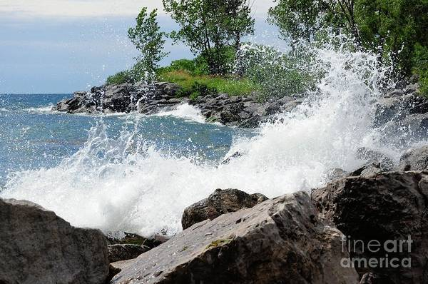 Water Art Print featuring the photograph Splash by Elaine Manley