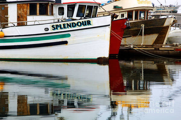 Fishing Boats Print featuring the photograph Splendour by Bob Christopher
