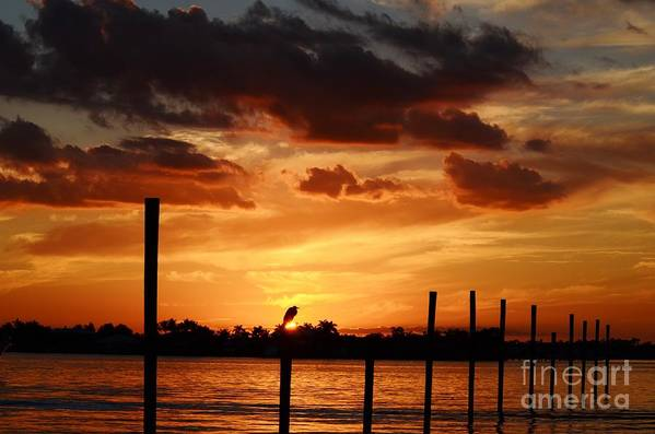 Sunset Art Print featuring the photograph Sunset 1-1-12 by Lynda Dawson-Youngclaus