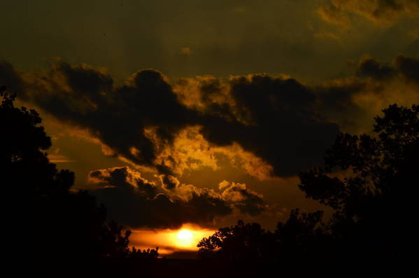 Sun Art Print featuring the photograph Sunset by Maria Schnell