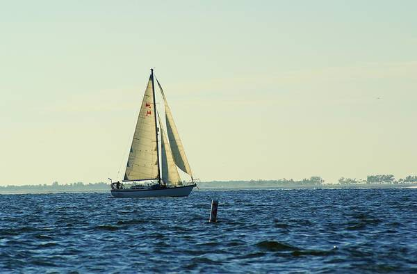 Boat Art Print featuring the photograph The Sloop by Florene Welebny