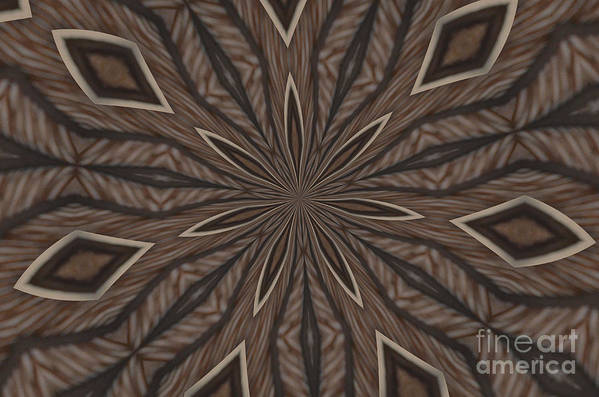 Kaleidoscope Art Print featuring the photograph Zebra Stripes by Donna Brown